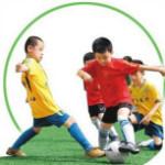 广东体育职业技术学院研究中心(测试)