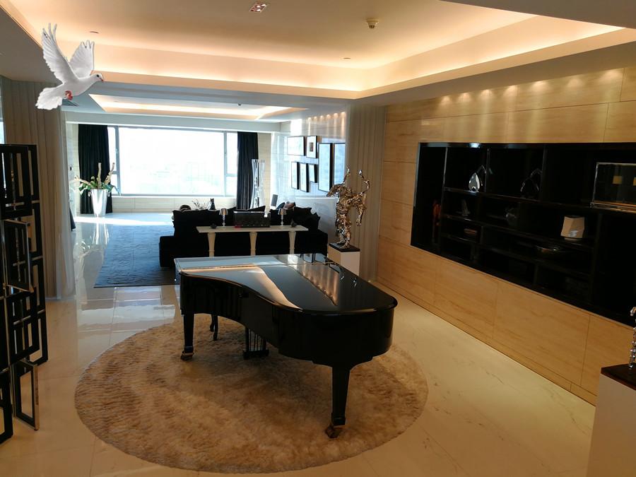 2000万精心打造会所装修 意大利进口家具,意大利现代风格