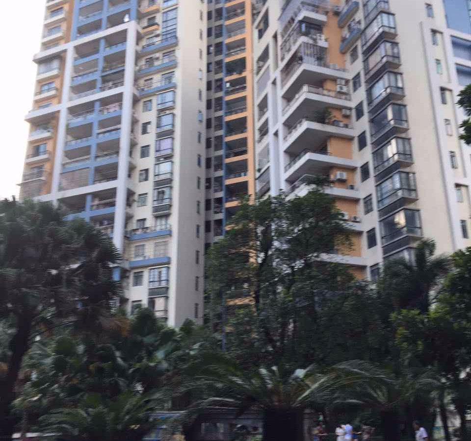 新区笋盘电梯房 钻石豪庭 南向3房2厅 超低首期 2万几均价