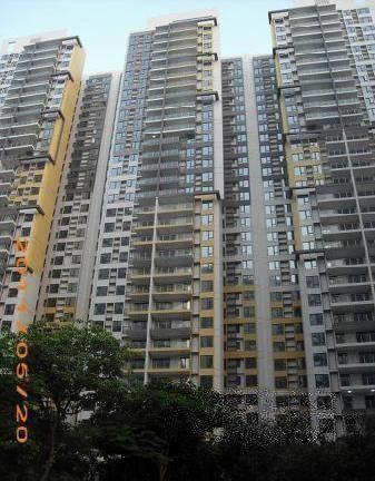 江南新苑 业主割爱 中高层正南向 159方4房 只需880万