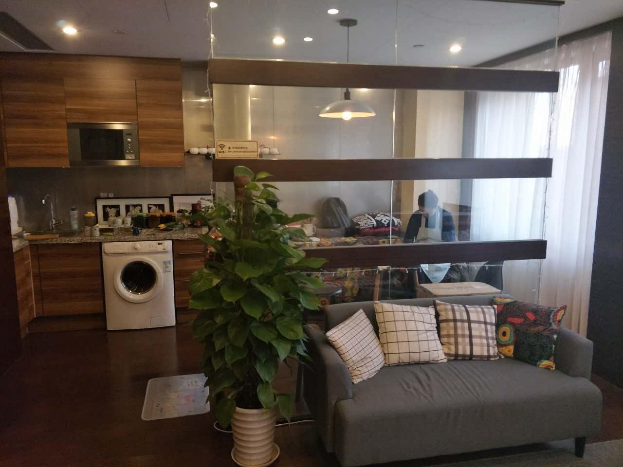 大悦公寓西向一居室小户型诚意出售 可随时预约看房 实房照片出售