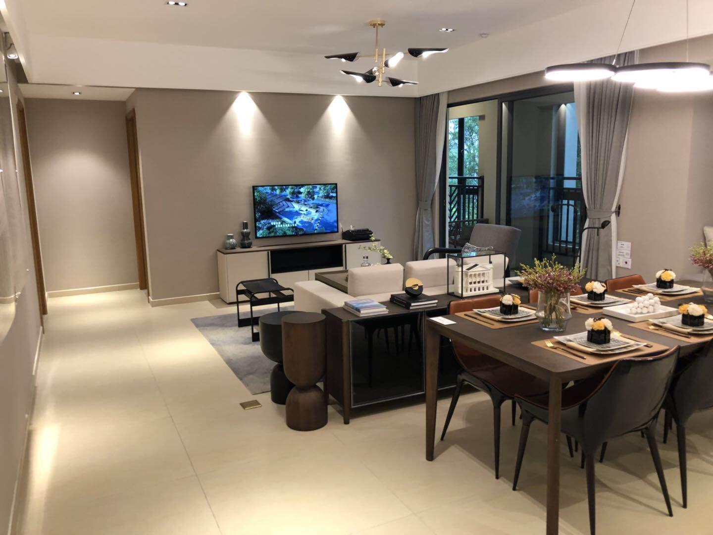 万科欧泊 加推全新1栋楼 王单位 广州市二中省级公立