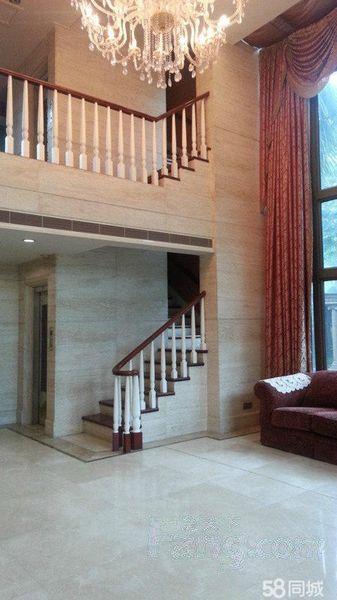 超大花园 独栋别墅 带装修 带电梯 位置好  高