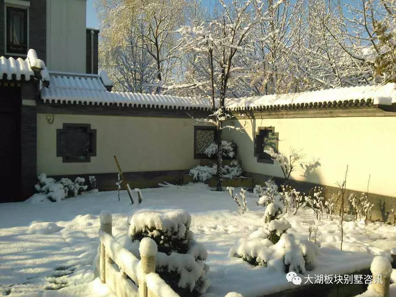 (新出)中式独栋,边户T户型,南向 花园,园区