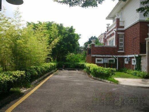 珠江壹城别墅,房,带花园,带车位,