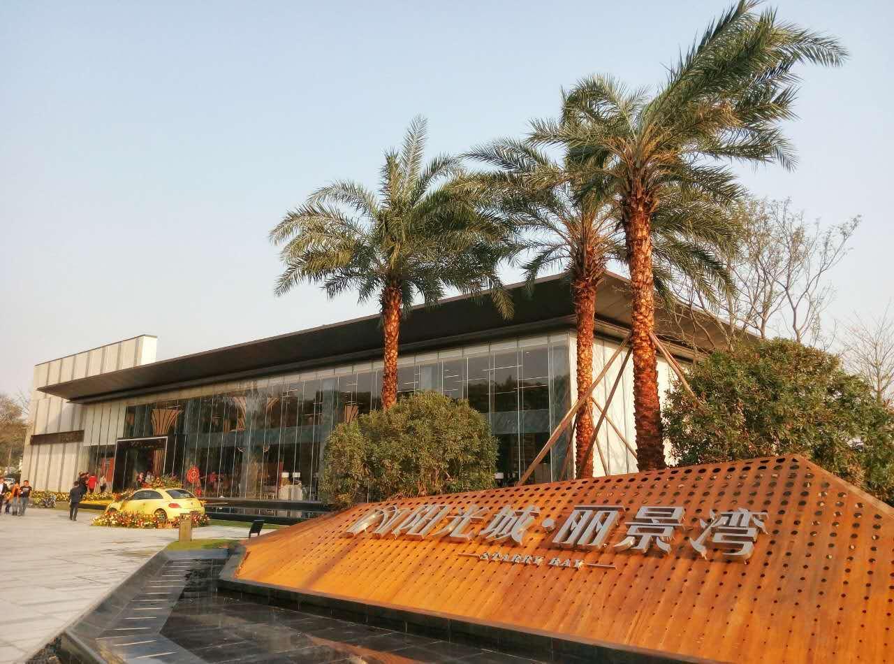 阳光城·丽景湾 世界宜居城市广州滨海新城 全景洋房1.2万起