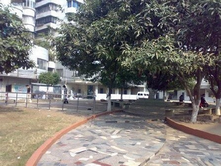 南洲花苑 装修保养好 中层2房 大阳台